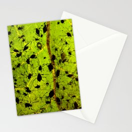 Aphis macro insects Stationery Cards