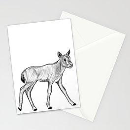Arabian oryx calf - ink illustration Stationery Cards