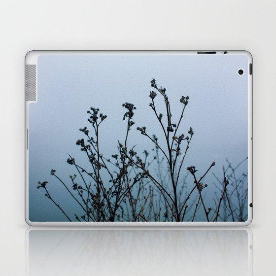 freezing Laptop & iPad Skin
