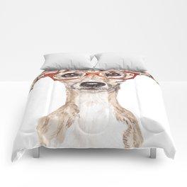 Iggeek Comforters