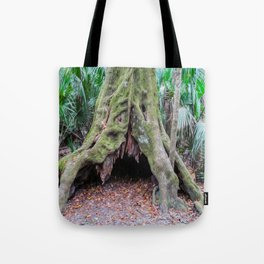 Interesting Tree Trunk Tote Bag