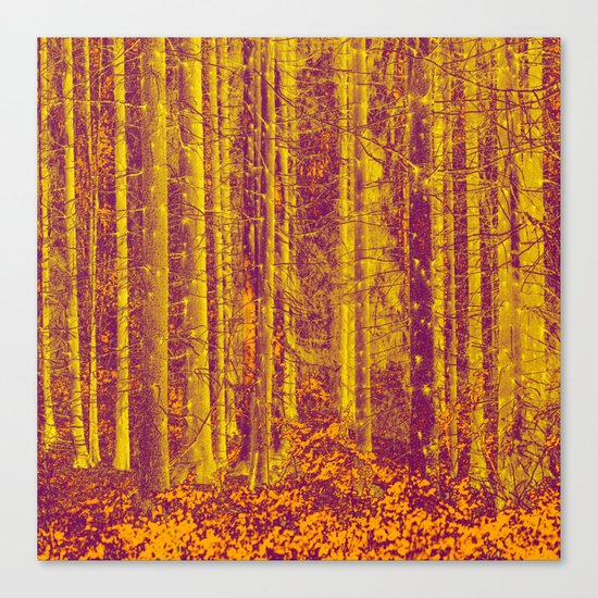 In the middle of the forest Canvas Print