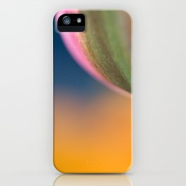 Pink tulip, colorfull background iPhone Case