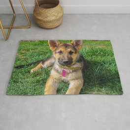 German Shepherd20151201 Rug