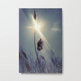 Blue light Metal Print