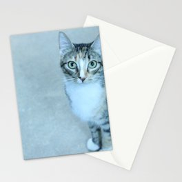 Revina the Cat with the Precious Face Stationery Cards