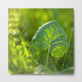 Large Green Leaf On A Sunny Background decor #society6 #homeart Metal Print