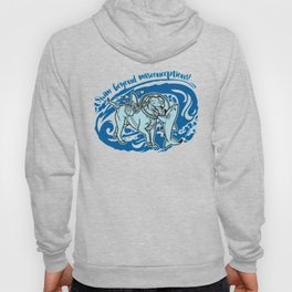 Lexy & Bruce - Swim beyond misconceptions! Hoody