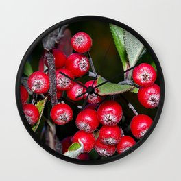Brilliant red autumn berries - Aronia fruit Wall Clock