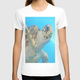Curious Sea Turtle T-shirt