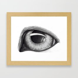 Portrait of Dog's Eye Framed Art Print