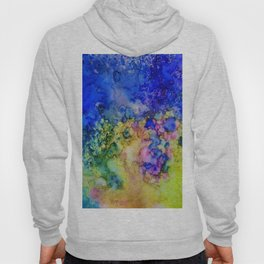 the conglomerate of color Hoody