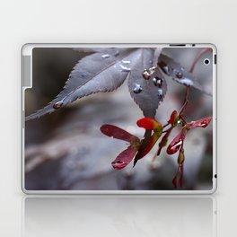 Japanese Maple Seeds II Laptop & iPad Skin