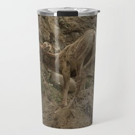 Baby Mountain Goat in Yellowstone National Park, WY Travel Mug
