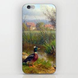 Carl Jutz Ducks iPhone Skin