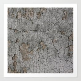 Old Brittle Wall 3 Art Print