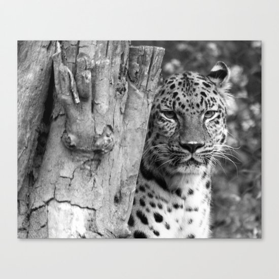Let's do lunch. Canvas Print