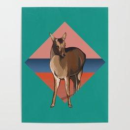 Miyajima Deer Poster