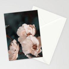 Pink velvet Stationery Cards