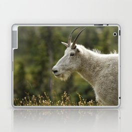 Age and Wisdom in a Mountain Goat Laptop & iPad Skin