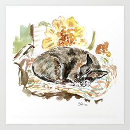 Phillippe, American Snowshoe Siamese Cat Art Print
