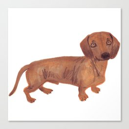 Dachshund Sausage dog Canvas Print