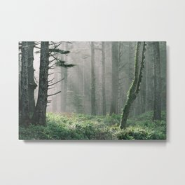 Real life or Skyrim? Metal Print