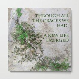 Through all the Cracks We Had Metal Print