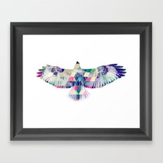 Hawk Framed Art Print