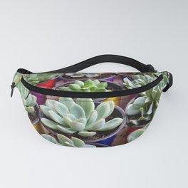 Market Succulents Fanny Pack