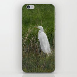 Great Egret iPhone Skin