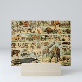 Mammal Illustration - Larousse Mini Art Print