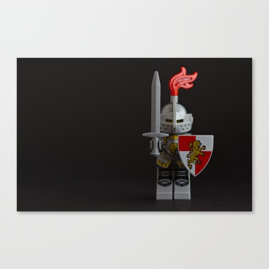 An experiment in DOF Canvas Print