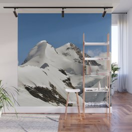 Castor and Pollux Wall Mural