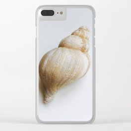 Gastropod Shell Clear iPhone Case