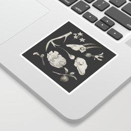 Bones and Botanical Sketches Sticker