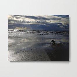 Solitude 2  Metal Print