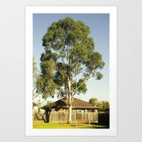 Tallest Tree Art Print