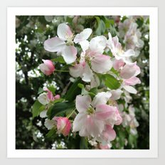 Simple Blossoms Art Print