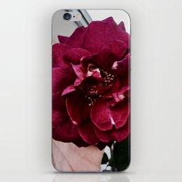 I'll soak up the pain iPhone Skin