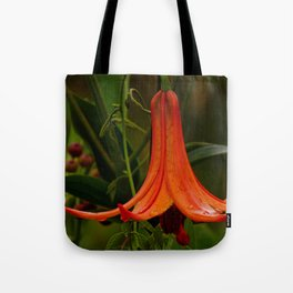Wild Lily Love Tote Bag