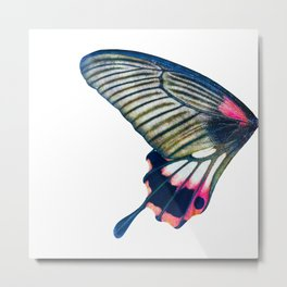 Butterfly left wing - find the right wing in my store :) Metal Print