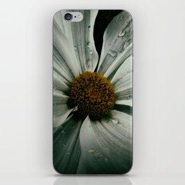 Hush iPhone Skin