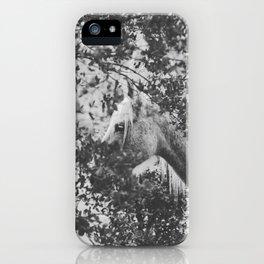 Horse II _ Photography iPhone Case