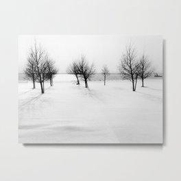 Wintertime in the Netherlands Metal Print
