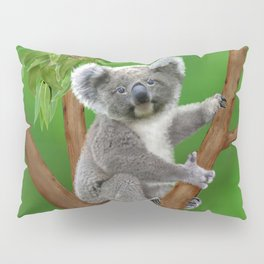 Blue-eyed Baby Koala Bear Pillow Sham