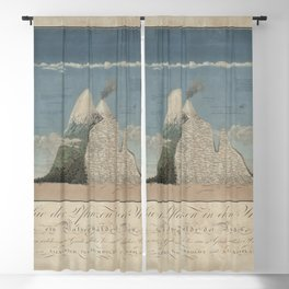 Alexander von Humboldt - Section View of Plants on the Chimborazo and Cotopaxi Volcanoes (1807) Blackout Curtain