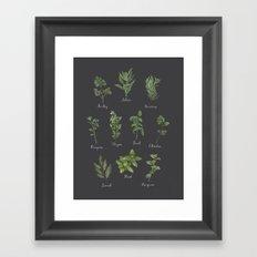HERBS on black Framed Art Print