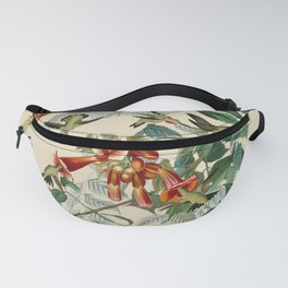 Vintage Hummingbird Illustration - Birds of America Fanny Pack