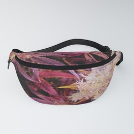 Intense Fanny Pack